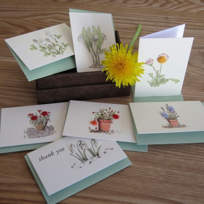 Boxed Collection of Flower Gift Cards