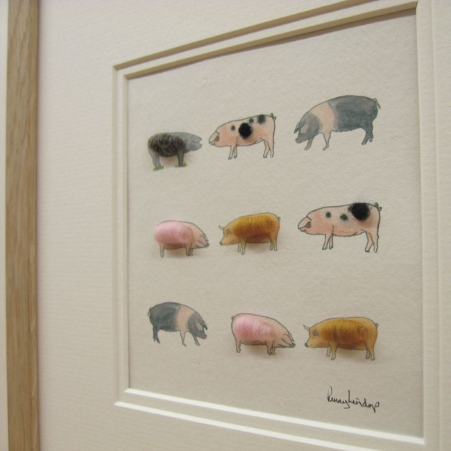 Pig Picture - Britain's Ancient Breeds