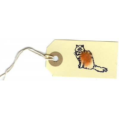Pack of 6 Gift Tags with a Fluffy Cat