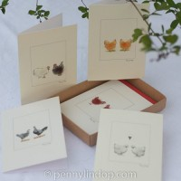 Boxed Set of 5 Chicken Cards