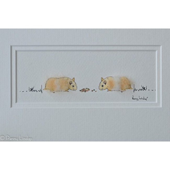 Picture - 2 Hamsters