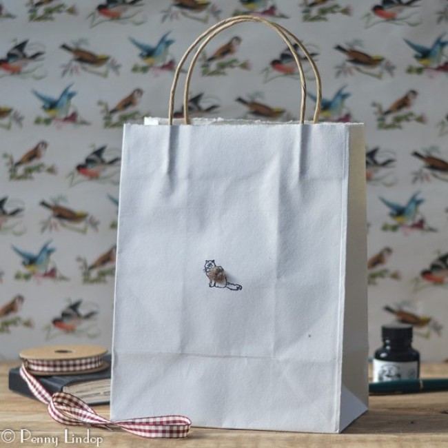 Fuffy Cat Gift Bag