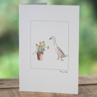 Duck Card - Indian Runner Duck & Daffodils