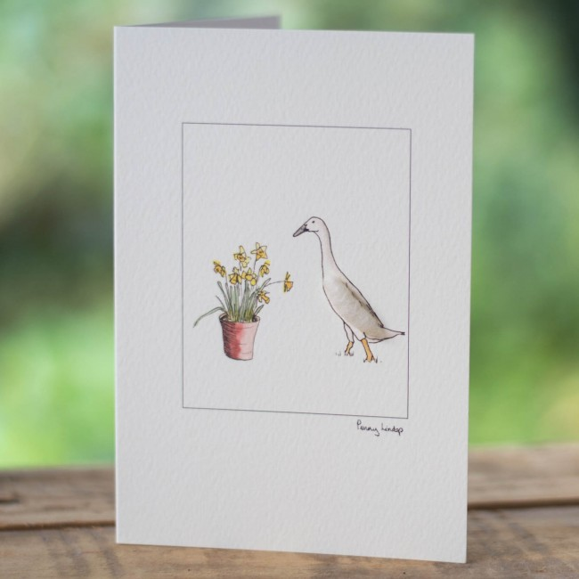 Indian Runner Duck & Daffodils Card