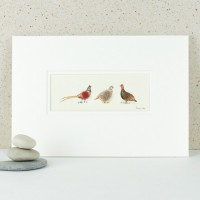 Game birds print - pheasant, partridge, grouse