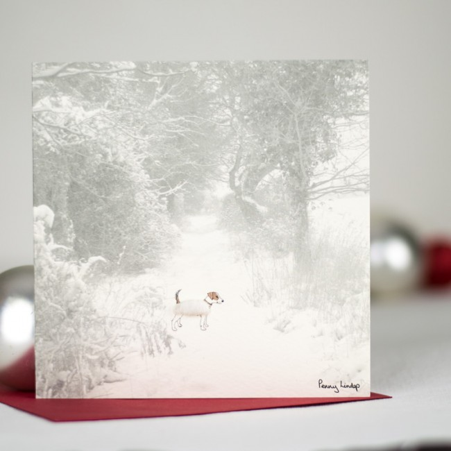 Jack Russell in the snow winter card