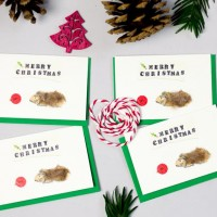Guinea Pig Christmas Gift Cards - Pack of 4