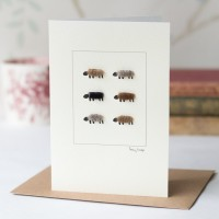 Natural sheep card