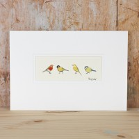 Garden Birds picture - small