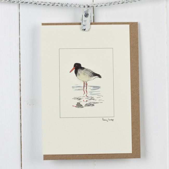 Oyster Catcher Bird Card