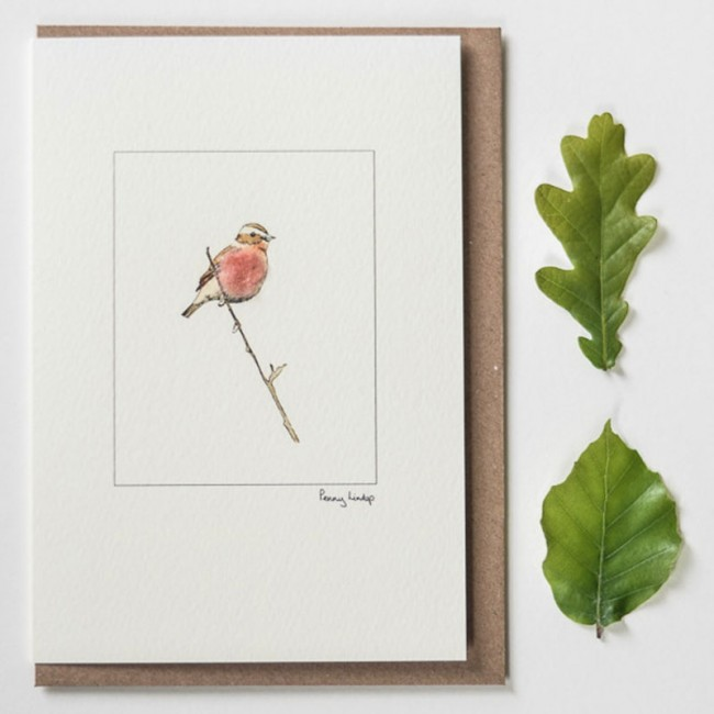 Whinchat Card