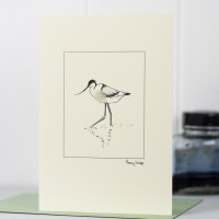Avocet Bird Card