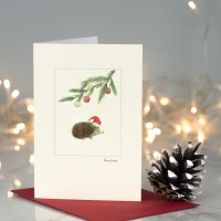 Hedgehog under a pine sprig Christmas card