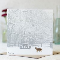 Dog Photographic Card with a Border Terrier in the Snow
