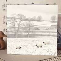 Sheep in a Winter Landscape Photographic Card