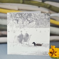 Dog Photographic Card with a Dachshund and Park Bench