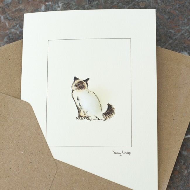 Cat card - Birman cat