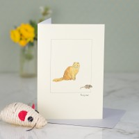 Cat Card - Scottish Fold Cat