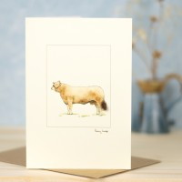 Cow Simmental card