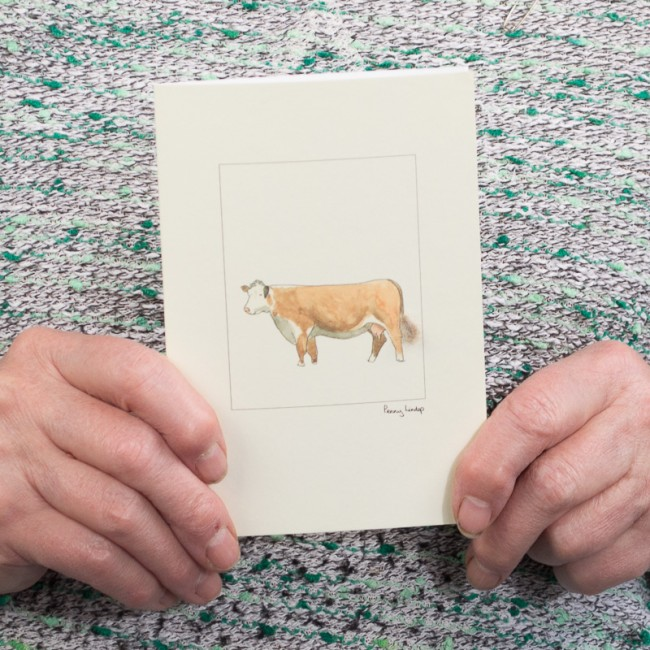 Cow Hereford card