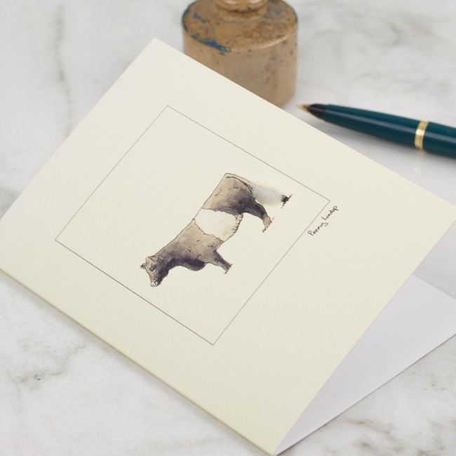 Cow Card - Belted Galloway