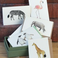 Boxed Collection of Safari Animals Gift Cards - 8 cards