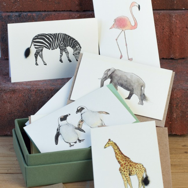 Boxed Collection of Safari Animals Gift Cards