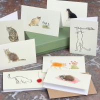 Boxed Collection of Cat Gift Cards - 8 cards