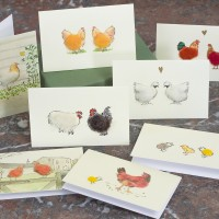 Boxed Collection of Hen and Chicken Gift Cards  - 8 cards