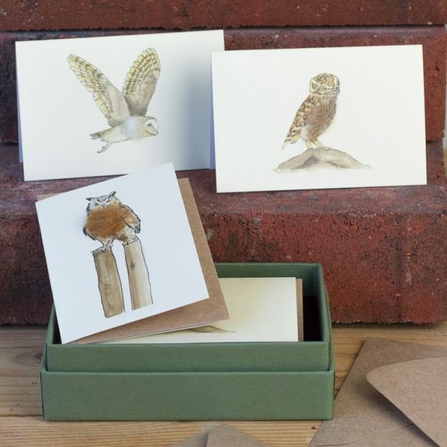 Boxed Collection of Owl Gift Cards