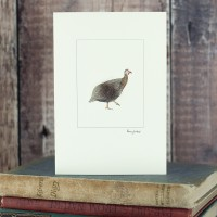 Guinea Fowl Card - a single guinea fowl
