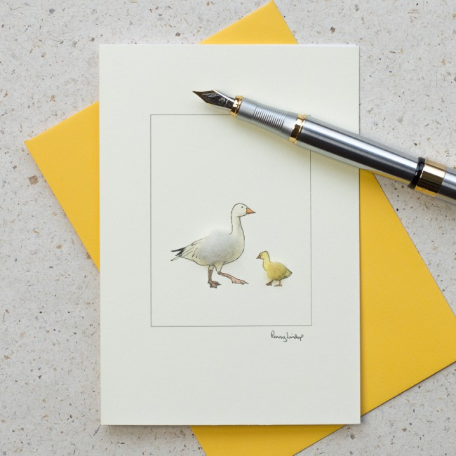 Goose Card - Snow Goose and Gosling