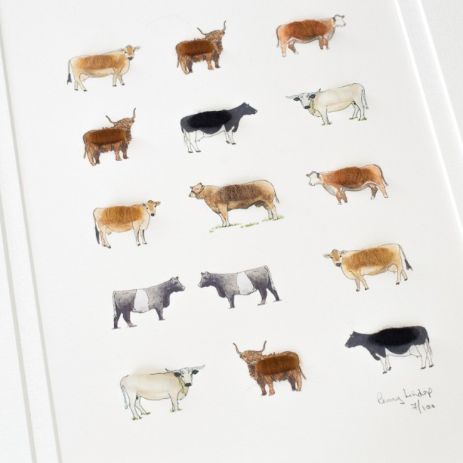 Cows Limited Edition Print, 15 Cows