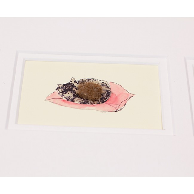 Framed Gift Cards - Cats