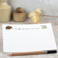 Hedgehog Notecards, boxed set of 10