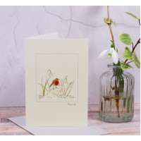 Snowdrop and Robin Greeting Card
