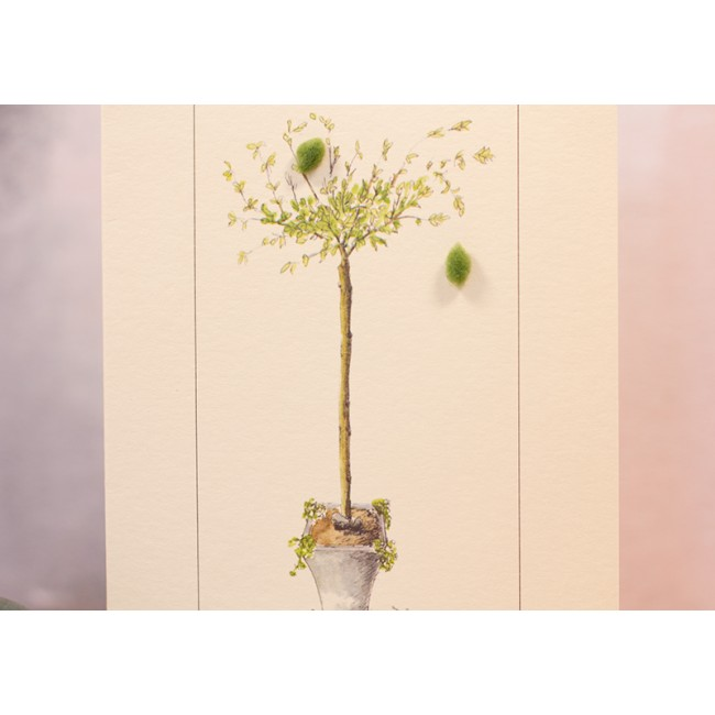 Willow in a Pot card