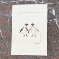 Penguins Card with Jackass Penguins