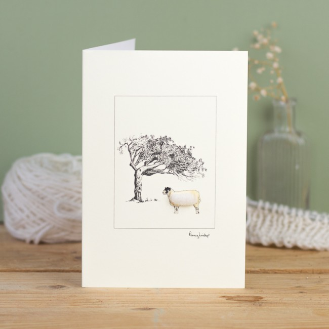 Sheep card - mule and windswept tree
