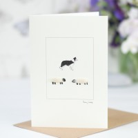 Sheep Card - with border collie dog