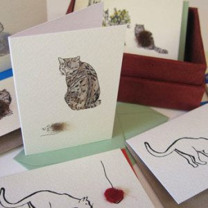 Boxed Gift Cards with Cats