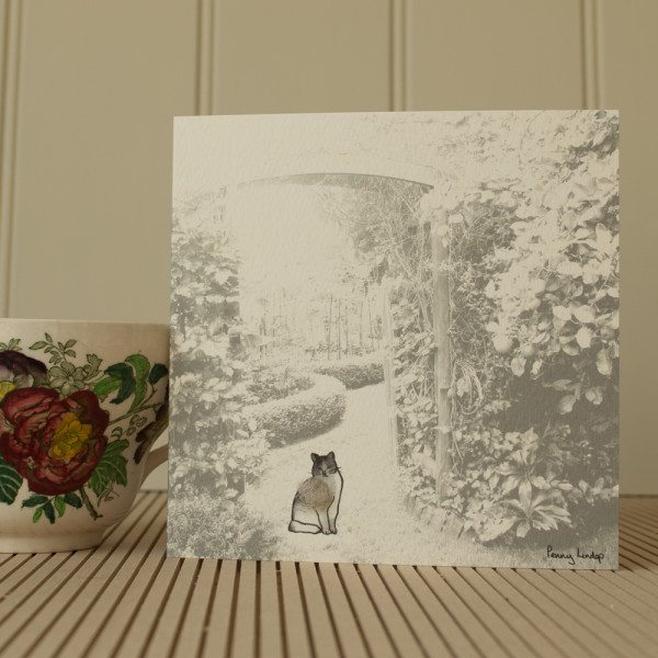 Greeting card - cat in the garden