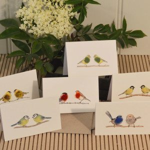 Boxed Gift Cards with Garden Birds