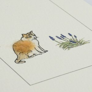 Greeting Card - Cat - ginger and white