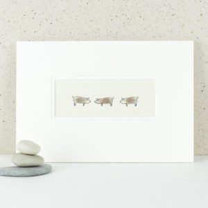 Three little pigs picture with woolly pigs