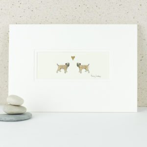 Border terriers in love picture