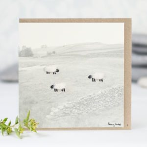 Woolly sheep in the hills greeting card