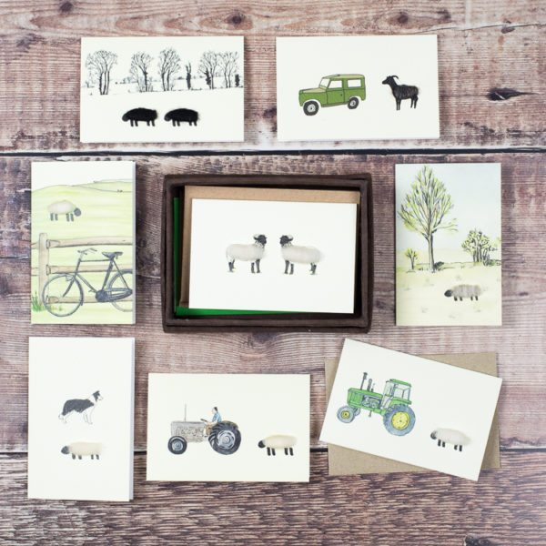Sheep gift cards - box of 8