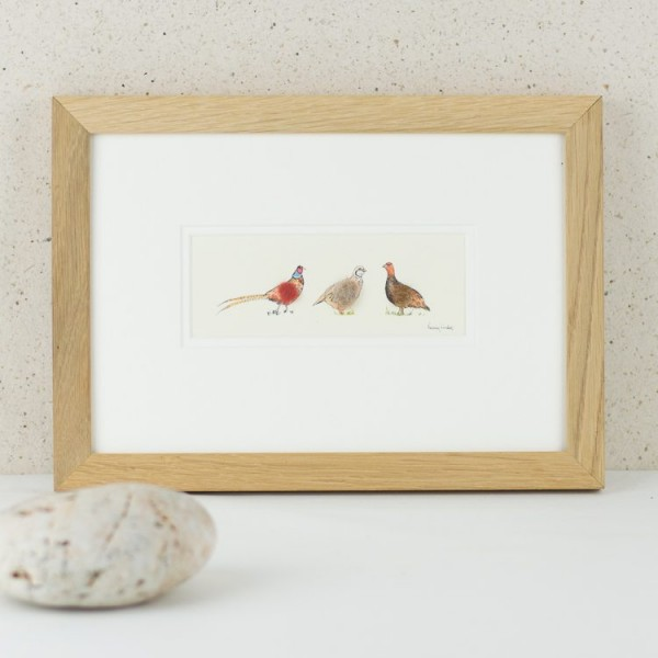 Game birds picture
